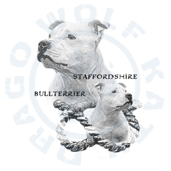 Staffbull Balthazar