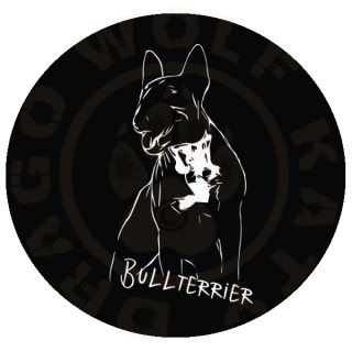 Bullterrier Chilli